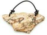Picture Jasper Gemstone Slab Pendant (GSP1806)