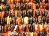 Genuine Amber Chip Beads 5-15mm (AB55)