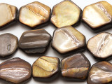Brown Irregular Hexagon Shell Beads 20-25mm (SH571)