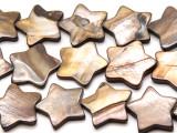 Brown Star Tabular Shell Beads 25mm (SH572)