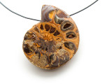 Ammonite Pendant 34mm (AM536)