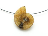Ammonite Pendant 25mm (AM592)
