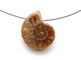 Ammonite Pendant 24mm (AM603)