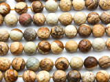 Picture Jasper Faceted Round Gemstone Beads 10mm (GS4630)
