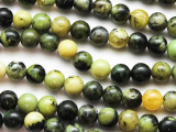 Chrysoprase Round Gemstone Beads 8mm (GS4752)