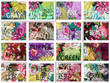 Jungle of Flowers pattern