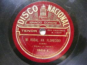 IGNACIO CORSINI Nacional 18414 TANGO 78 MI ROSAL HA FLORECIDO / CABECITA PLATEAD