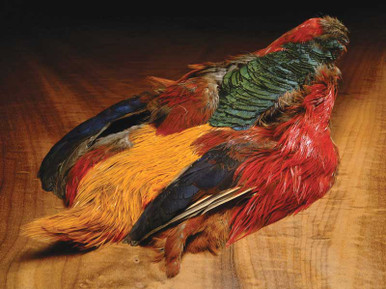 Golden Pheasant Complete Skins