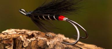 AHREX HR420- Black Bear Red Butt by John Rasmussen