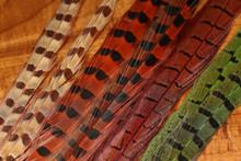 Spirit River UV2 Ringneck Pheasant Tails