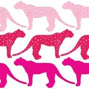 Avalisa Cheetah