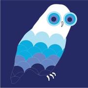 Avalisa Owls