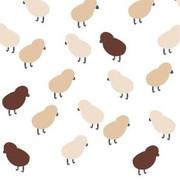 Avalisa Chicks