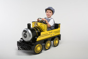 Airflow Collectibles Bumble Bee Riding Train-AF106
