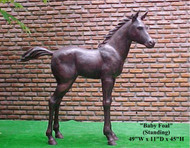Baby Foal - Standing - Winter Sale