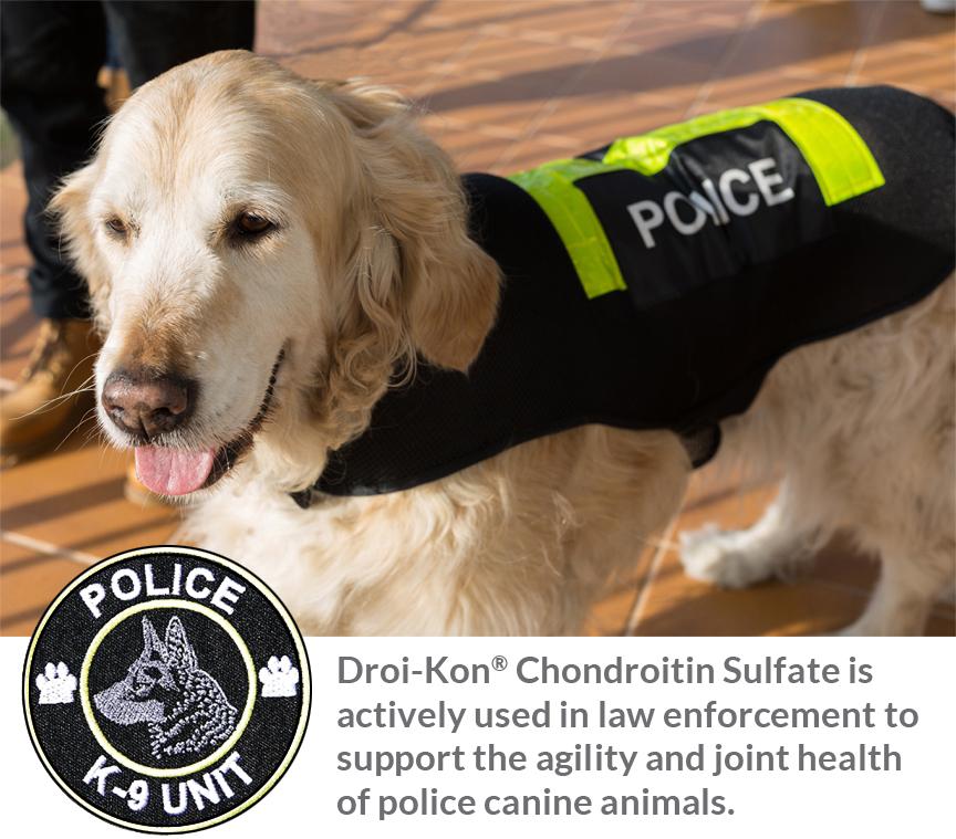 police-dog-k9-text.jpg