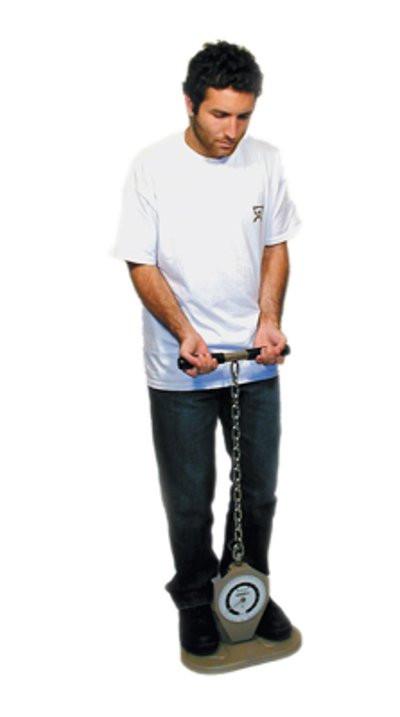 Back Leg Chest Dynamometer for FCE Job Task Evaluation