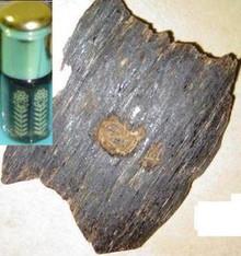 Aged Dark Aloeswood/Agarwood/Oud Irian Jaya oil1cc