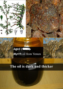 Aged Myrrh oil - Royal Quality 3ml (medium thick & dark coloured oil) non alcoholic