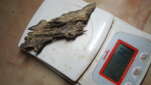 Agarwood/Aloeswood/Oud chips, Assam India Super 14g - excellent for burning/display piece..
