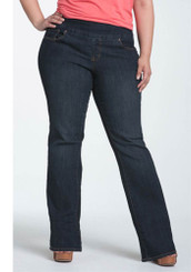 Paley Pull-On Jean in Plus