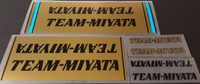 Team Miyata 1981 Bicycle Decal Set