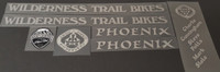 WTB Wilderness Trail Bikes Phoenix Bicycle Decal Set 1994