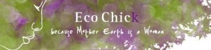 ecochick-300x72.jpg