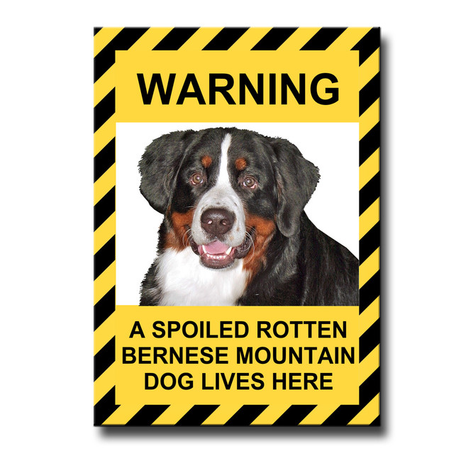 Bernese Mountain Dog Spoiled Rotten Fridge Magnet