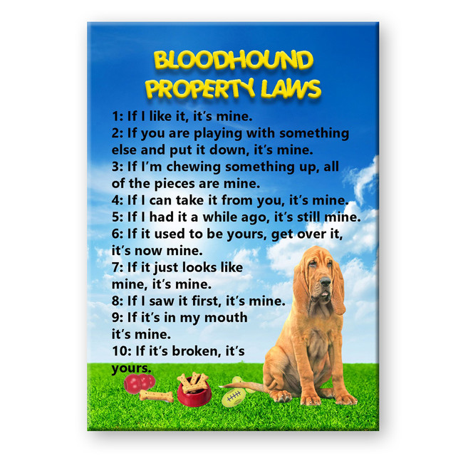 Bloodhound Property Laws Fridge Magnet