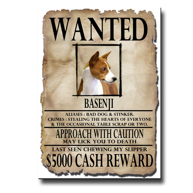 Basenji Wanted Poster Fridge Magnet No 1