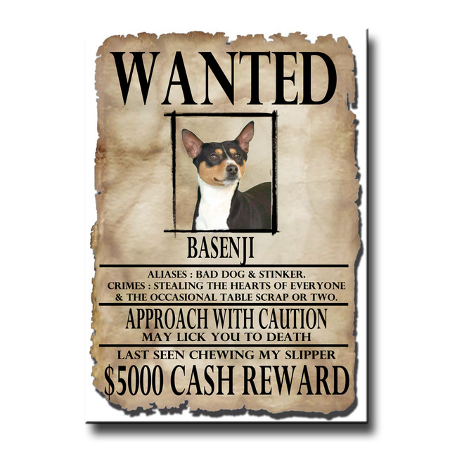 Basenji Wanted Poster Fridge Magnet No 2
