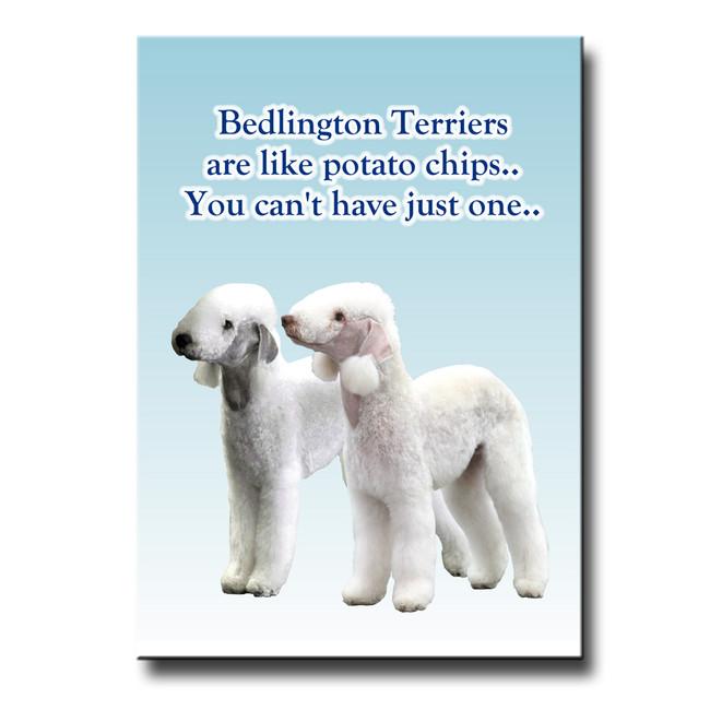 Bedlington Terrier Can't Have Just One Fridge Magnet