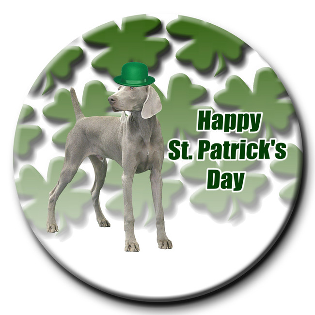 Weimaraner St Patricks Day Pin Badge