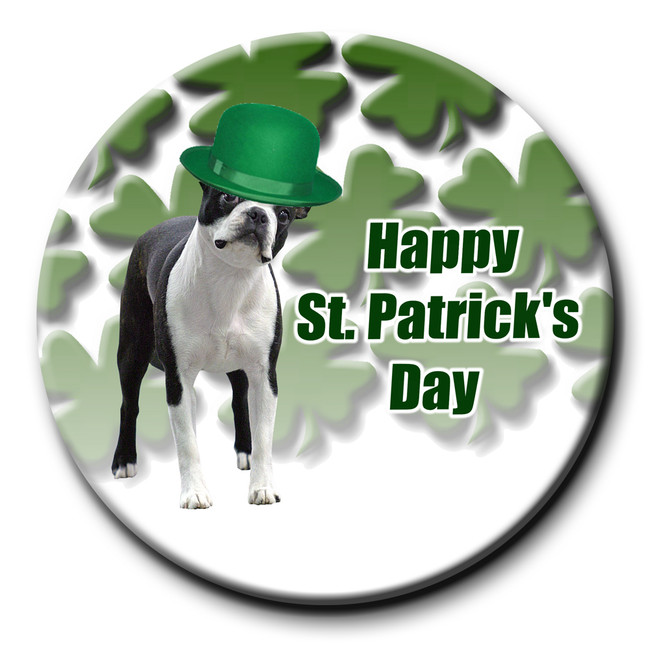 Boston Terrier St Patricks Day Pin Badge