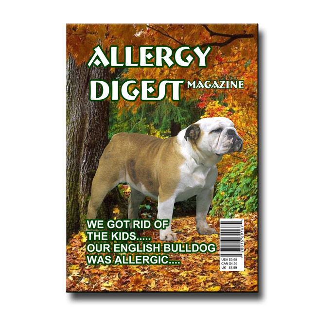 English Bulldog Allergy Rid of Kids Fridge Magnet No 2