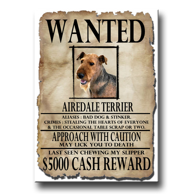 Airedale Terrier Wanted Poster Fridge Magnet