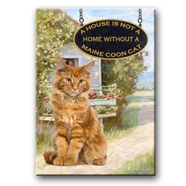 Maine Coon Cat a House is Not a Home Fridge Magnet No 2 (002)
