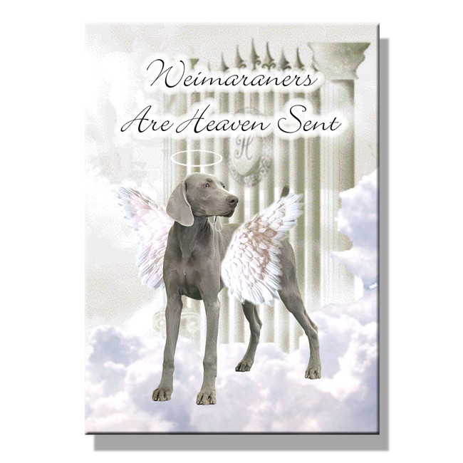Weimaraner Heaven Sent Fridge Magnet