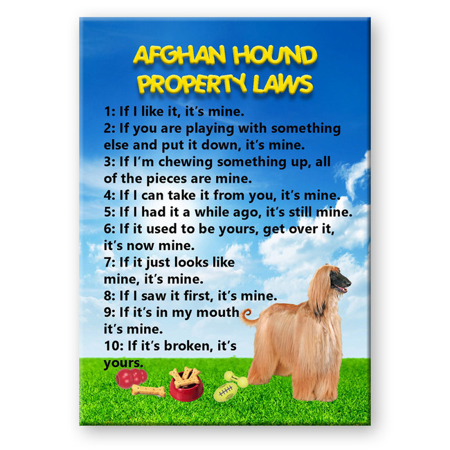 Afghan Hound Property Laws Fridge Magnet