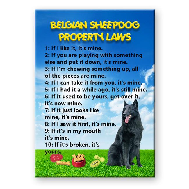 Belgian Sheepdog Property Laws Fridge Magnet