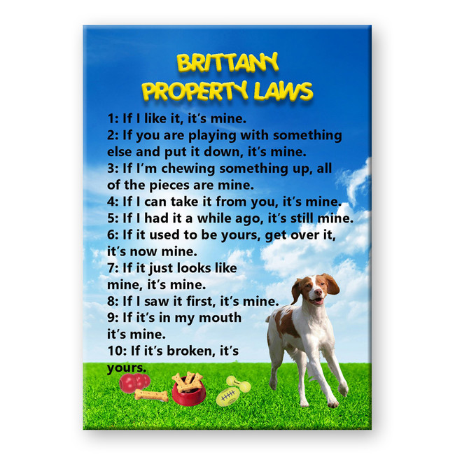 Brittany Property Laws Fridge Magnet