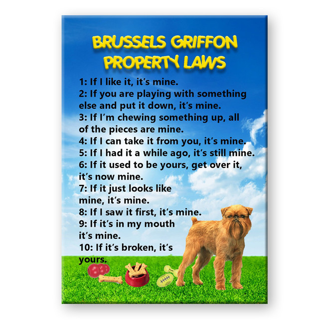 Brussels Griffon Property Laws Fridge Magnet No 2
