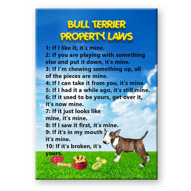 Bull Terrier Property Laws Fridge Magnet No 2