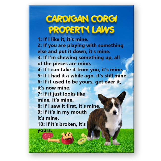 Cardigan Corgi Property Laws Fridge Magnet