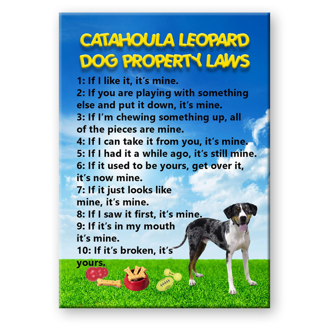 Catahoula Leopard Dog Property Laws Fridge Magnet
