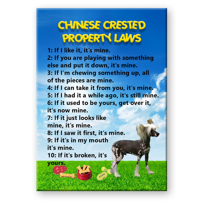 Chinese Crested Property Laws Fridge Magnet
