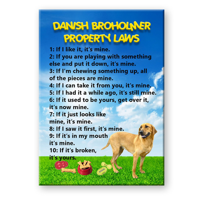 Danish Broholmer Property Laws Fridge Magnet