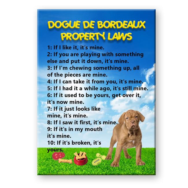 Dogue de Bordeaux Property Laws Fridge Magnet