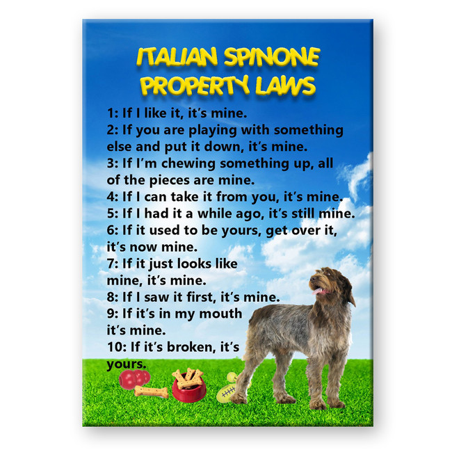 Italian Spinone Property Laws Fridge Magnet No 2